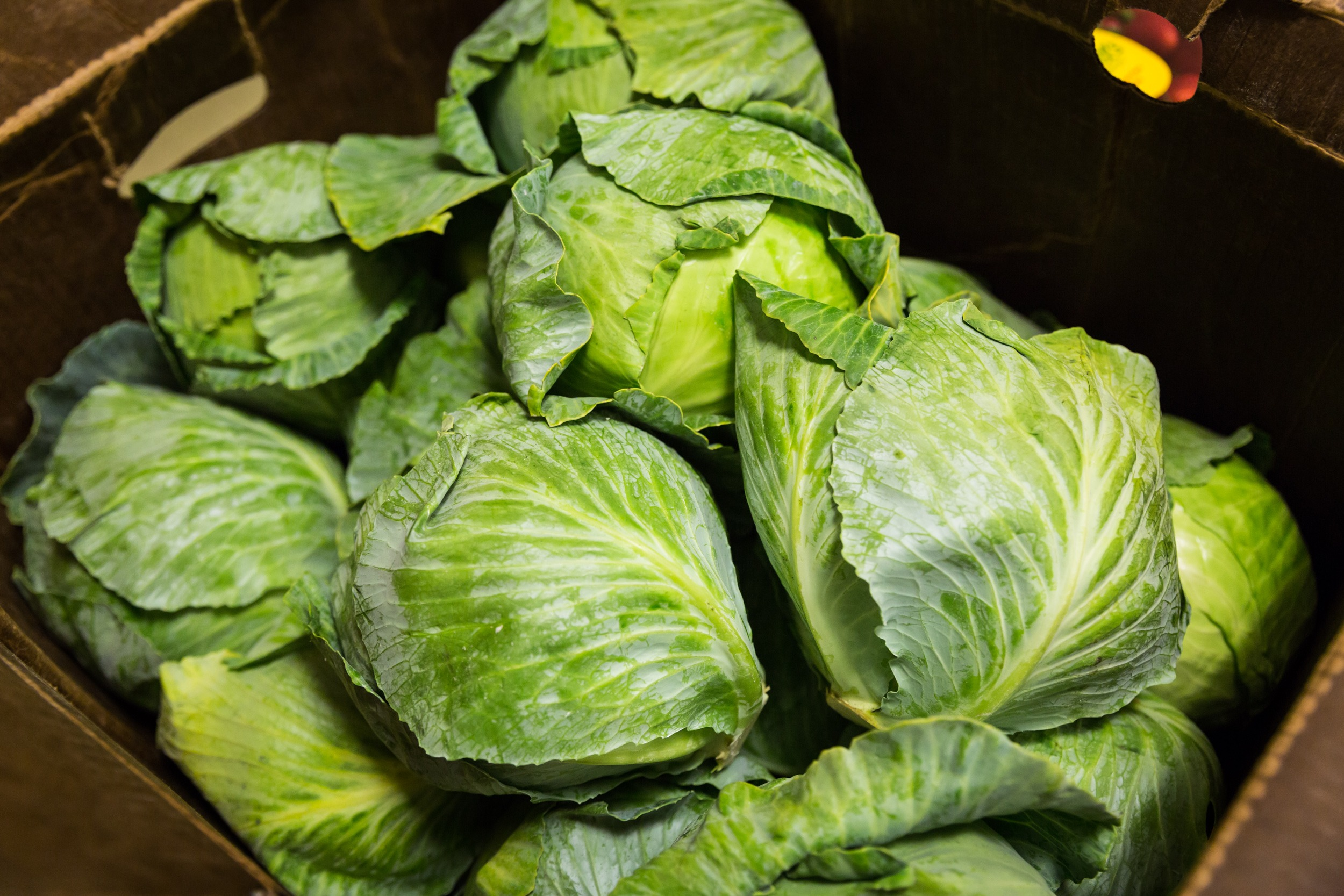 a box of cabbages